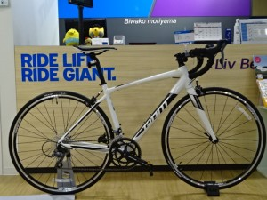 GIANT CONTEND2