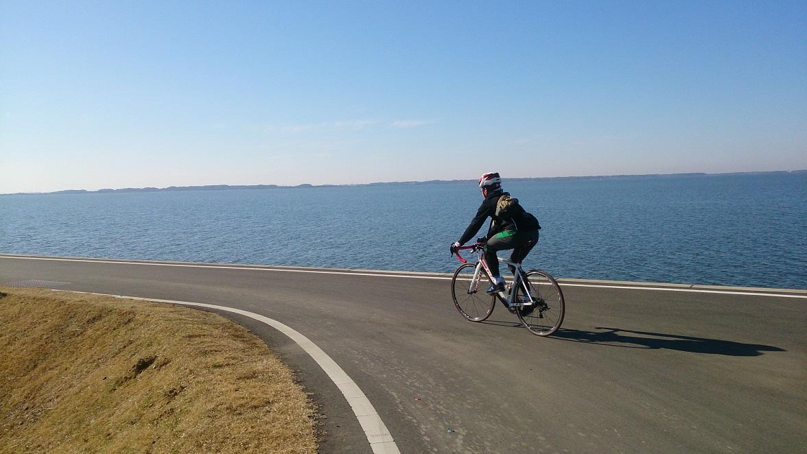 霞ヶ浦 サイクリング ロード